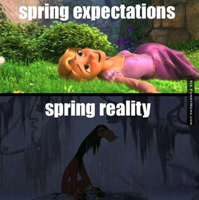 funny-memes-spring-expectations